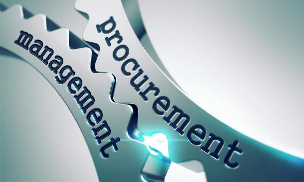Government Procurement with CobbleStone Software