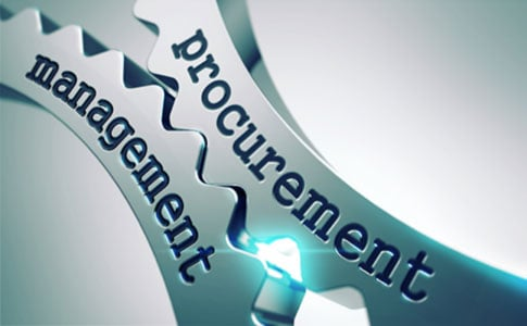 Government Procurement with CobbleStone Software
