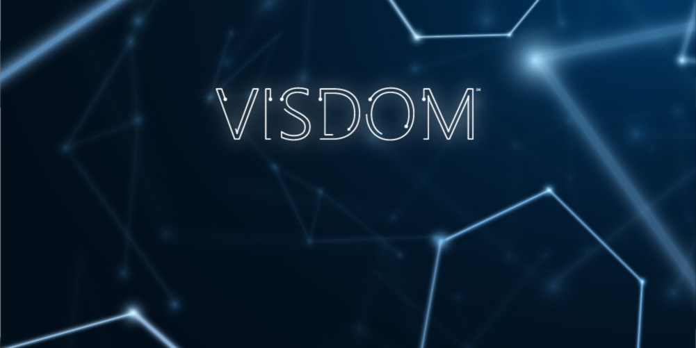 VISDOM by CobbleStone Software